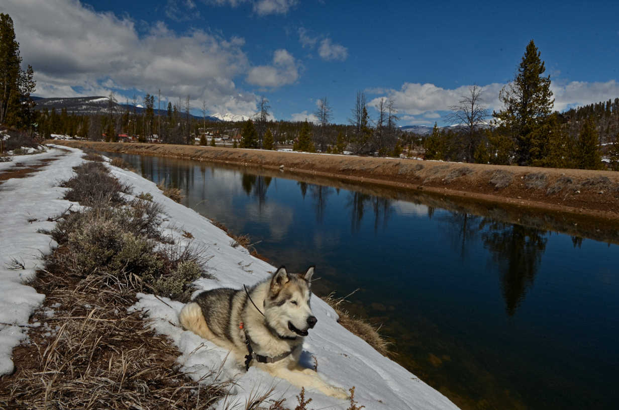 Fishing canal colorado real estate canal for Lake granby fishing report